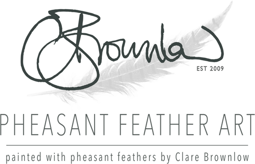 Clare Brownlow Pheasant Feather Art